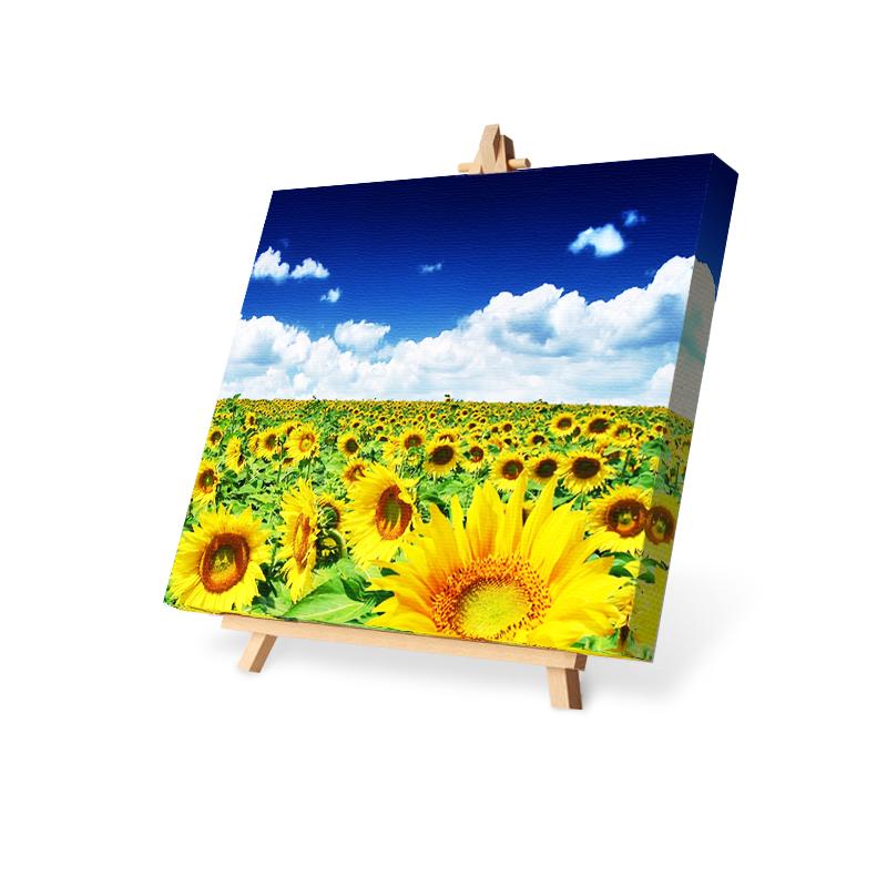 canvas med egen bild